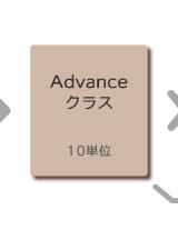 木の実デコール デコールツァプフェン DZ-Advanceクラス